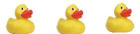 3-ducks-in-a-row